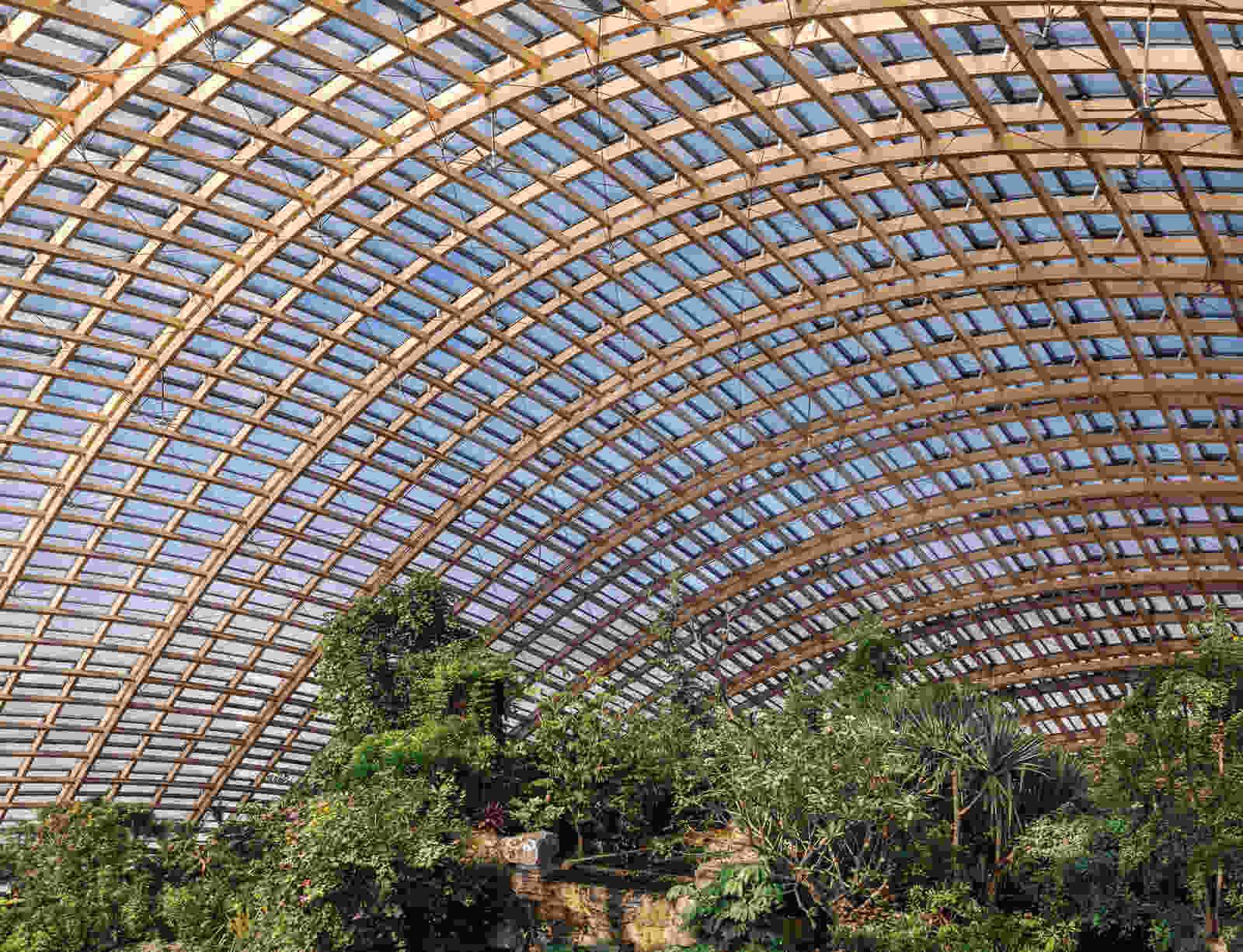 338 dmaa Taiyuan Botanical Garden 02 greenhouse 0871a Pano Creat AR
