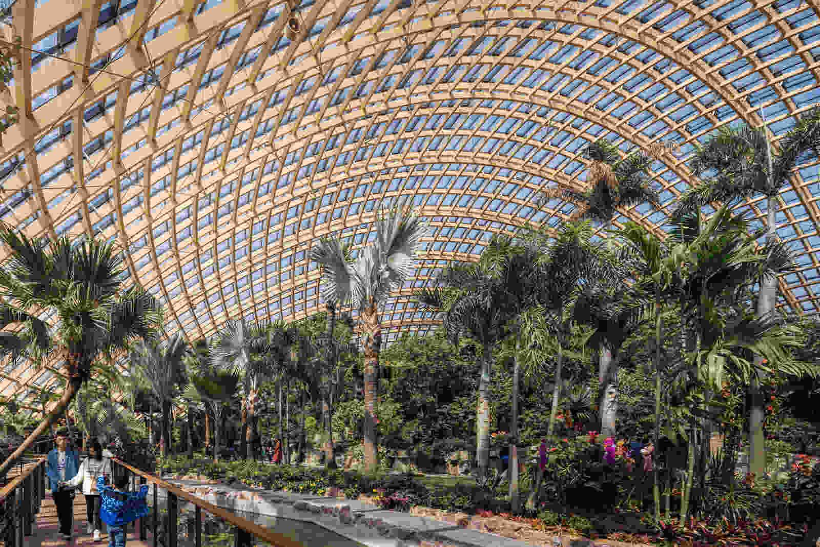 338 dmaa Taiyuan Botanical Garden 02 greenhouse 5668 Creat AR