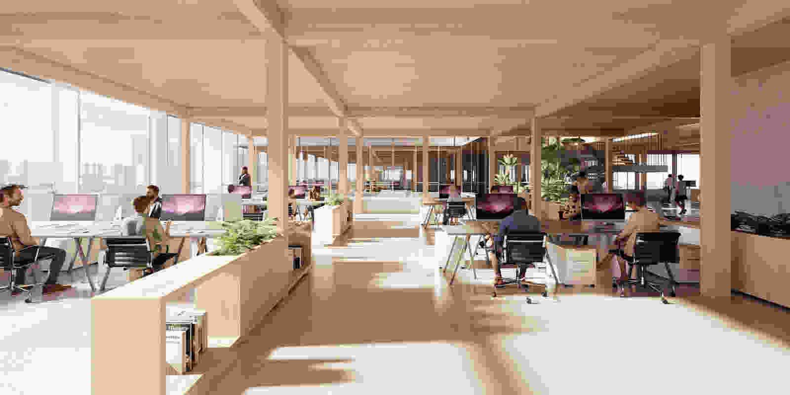 491 dmaa vis 11 A1 office space